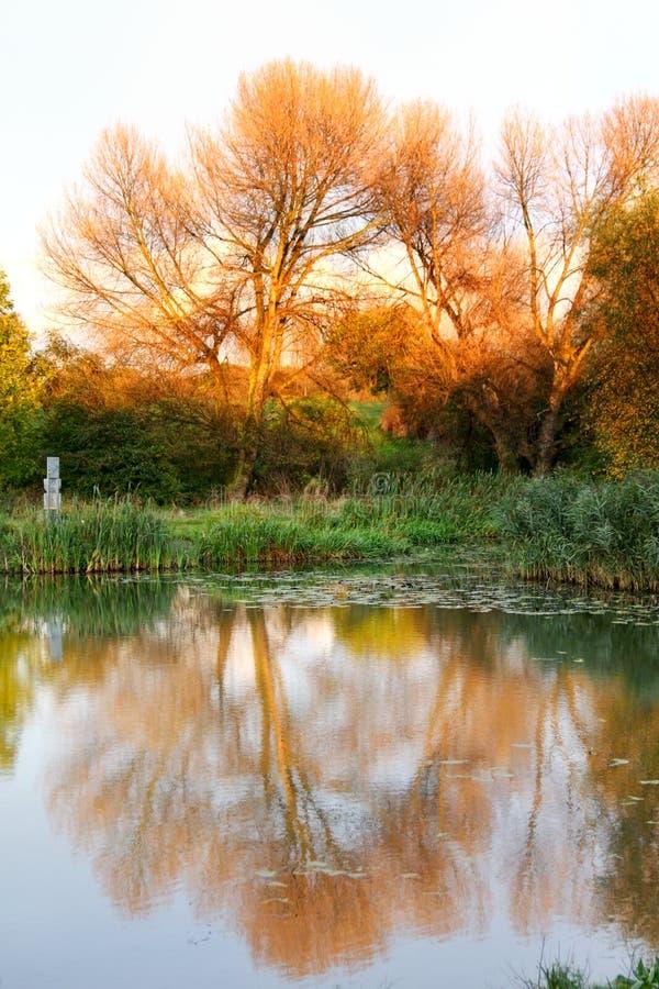 Download Jesień koloru jezioro obraz stock. Obraz złożonej z sezon - 11233587
