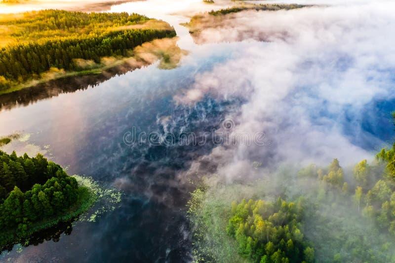 Jesie? krajobraz Jezioro i las zakrywający w mgle przy świtem Powietrzna sceneria zdjęcie royalty free