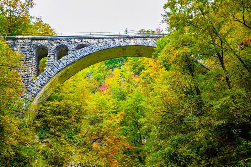 Jesie? las barwi z starym skalistym poci?gu mostem w naturalnym parku Vintgar zdjęcie royalty free