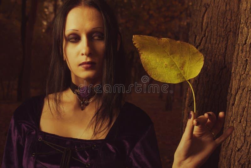 Download Jesień melancholia obraz stock. Obraz złożonej z melancholia - 27291891