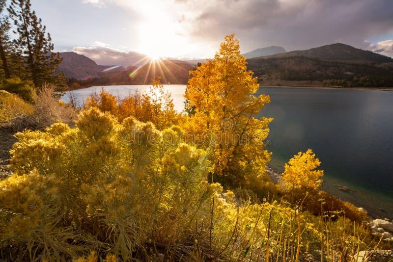Jesie? w Sierra Nevada zdjęcia royalty free