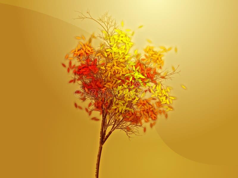 jesienią drzewo ilustracji