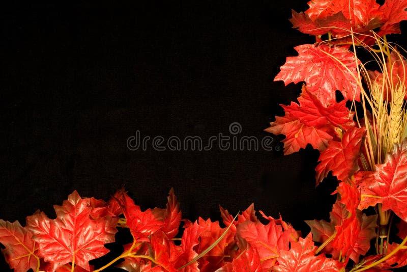 jesienią granicy ii obrazy stock