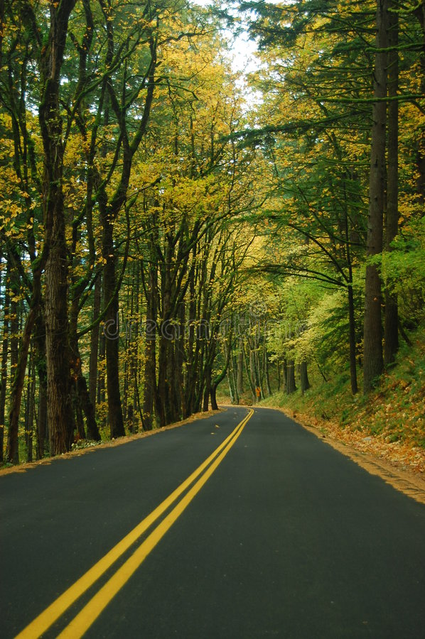 jesienią jazdy zdjęcie royalty free