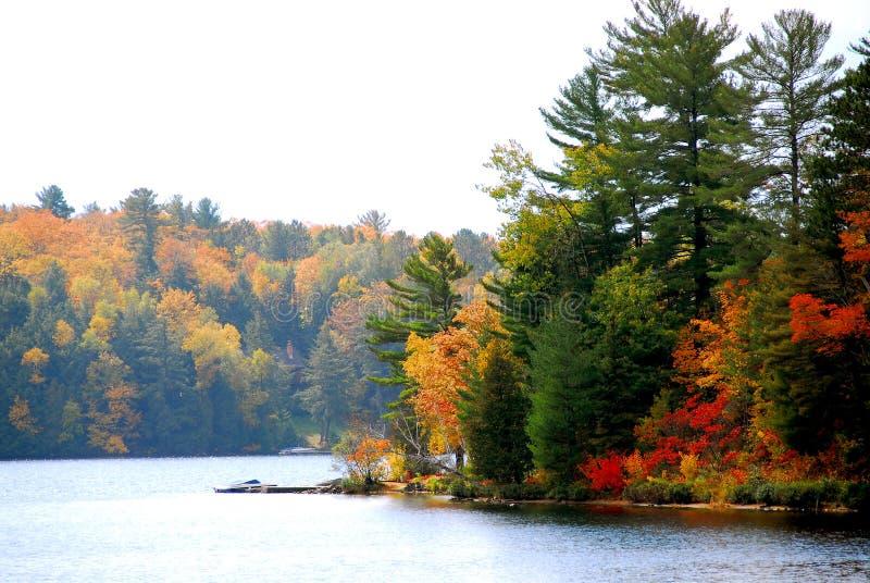 jesienią jeziora obraz stock