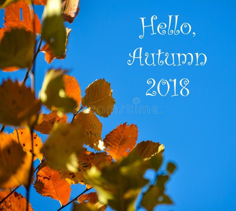 jesienią kolorowe tło Czerwoni jesień liście przeciw niebieskiemu niebu Miejsce dla inskrypci, Cześć jesień zdjęcie royalty free