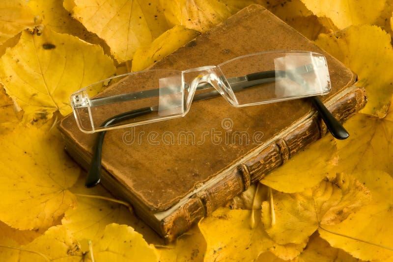 jesienią książkowi spectecles obraz stock