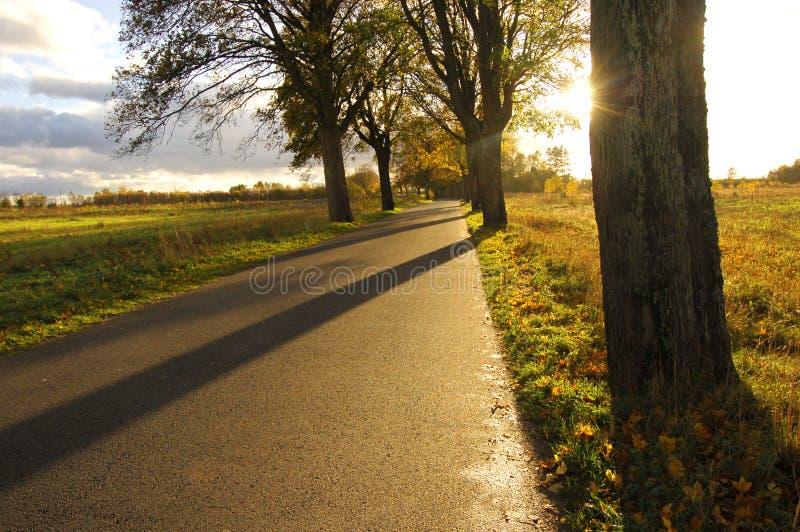 jesienią otoczenia obrazy stock