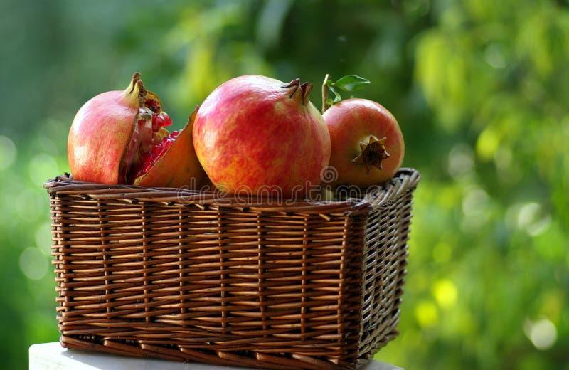 jesienią owoców zdjęcie stock