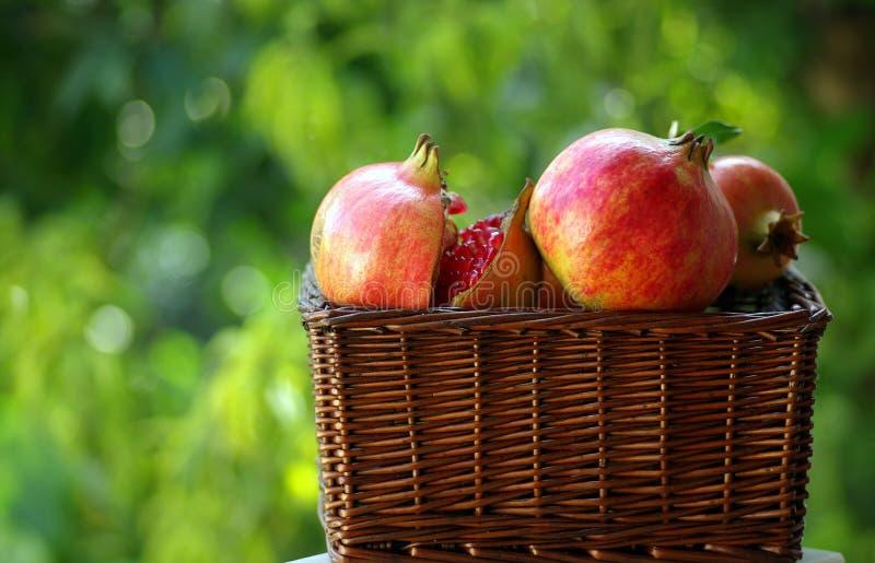 jesienią owoców obrazy stock