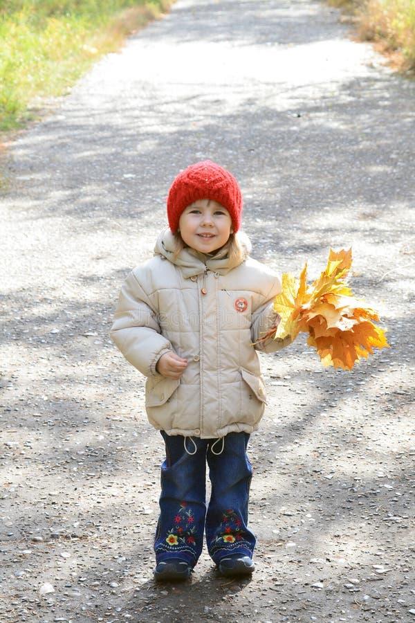 jesienią park dziewczyny się uśmiecha obrazy stock