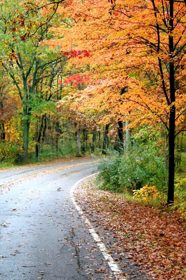 jesienią piękna jazda obrazy royalty free