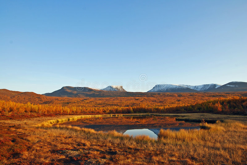 jesienią, scena sceniczna lake obrazy stock