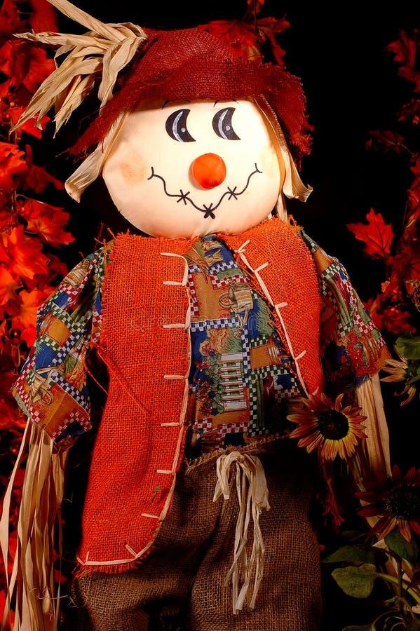 jesienią strach na wróble 2 zdjęcie stock