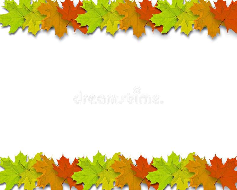 jesienią tło obraz royalty free
