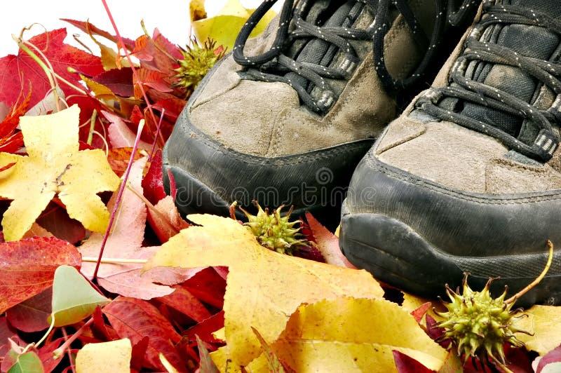 jesienią wędrówki zdjęcia stock