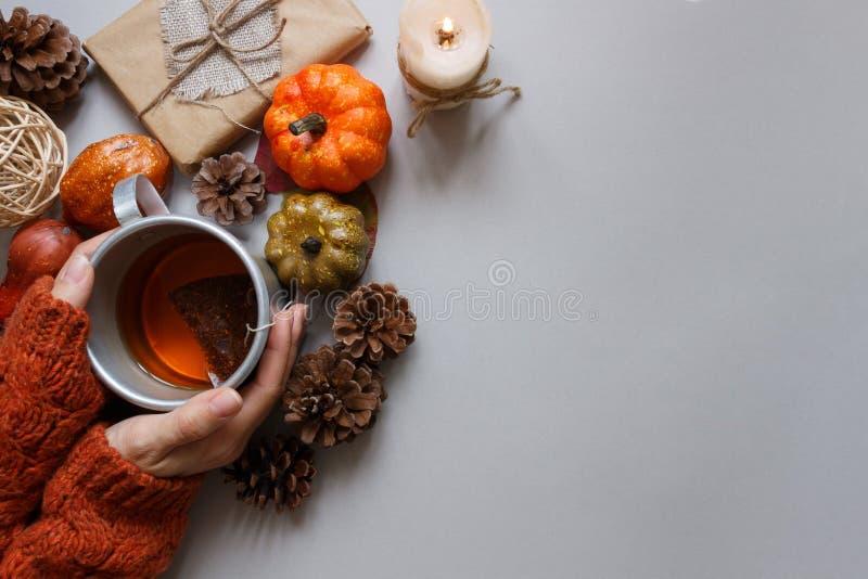 jesienią zbliżenie kolor tła ivy pomarańczową czerwień liści Ręki trzyma filiżankę herbata, jesieni dekoracja na szarym tle zdjęcie stock