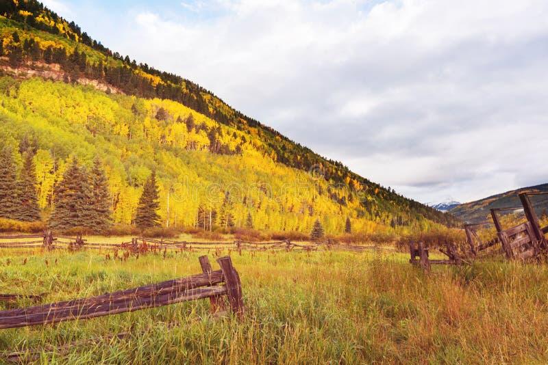 Jesieni łąka obraz stock