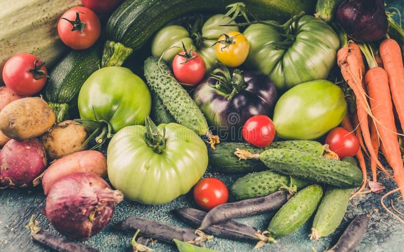 Jesieni żniwa Świezi warzywa: Pomidory, zucchini, grule, cebule, marchewki, fasole i grochy, Rolny Organicznie produktu tło zdjęcie royalty free