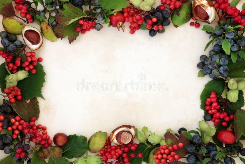 Jesieni żniwa granica zdjęcia stock
