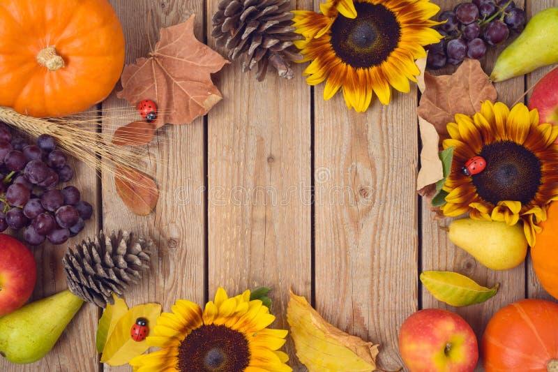 Jesieni żniwa pojęcie z banią, jabłkami i słonecznikami na drewnianym stole, Święto Dziękczynienia tło Odg?rny widok od above obrazy royalty free