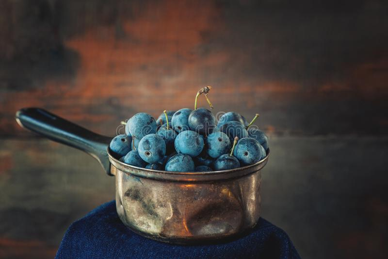 Jesieni żniwo błękitne sloe jagody na drewnianym stojaku kosmos kopii Wieśniaka styl zdjęcia stock