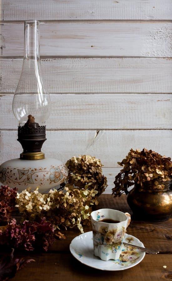 Jesieni życie z wysuszonymi liśćmi wciąż kończy kwiaty obraz royalty free