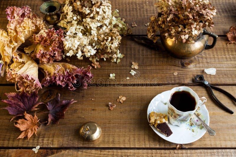 Jesieni życie z wysuszonymi liśćmi wciąż kończy kwiaty obrazy royalty free