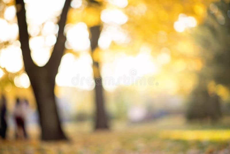 Jesieni abstrakt zamazujący tło z magiczni światła obraz stock