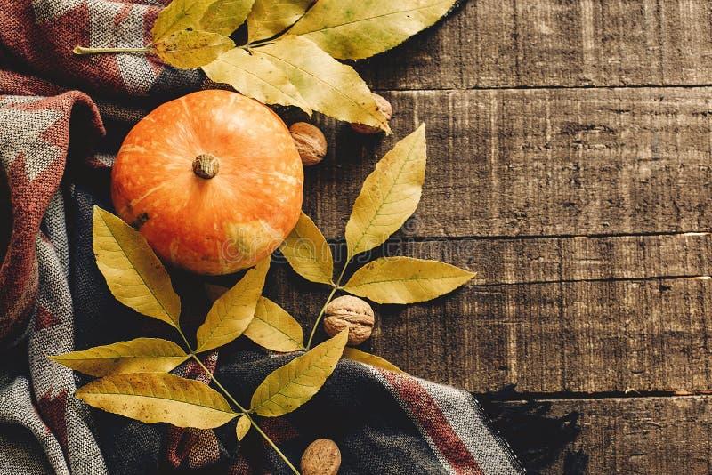 Jesieni bania z liśćmi i orzechami włoskimi na eleganckiego szalika odgórnym widoku fotografia stock