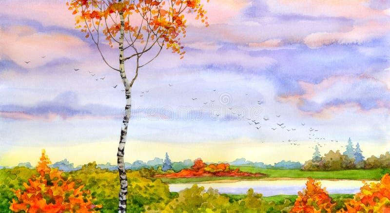 Jesieni brzoza royalty ilustracja
