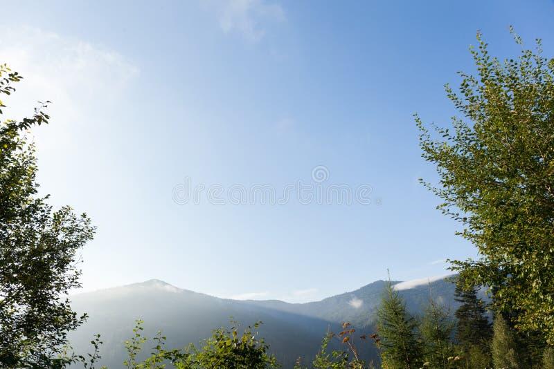 Jesieni Carpathians natury sosnowy las, niebieskie niebo i g?ry, Odbitkowa przestrze? dla teksta obrazy stock