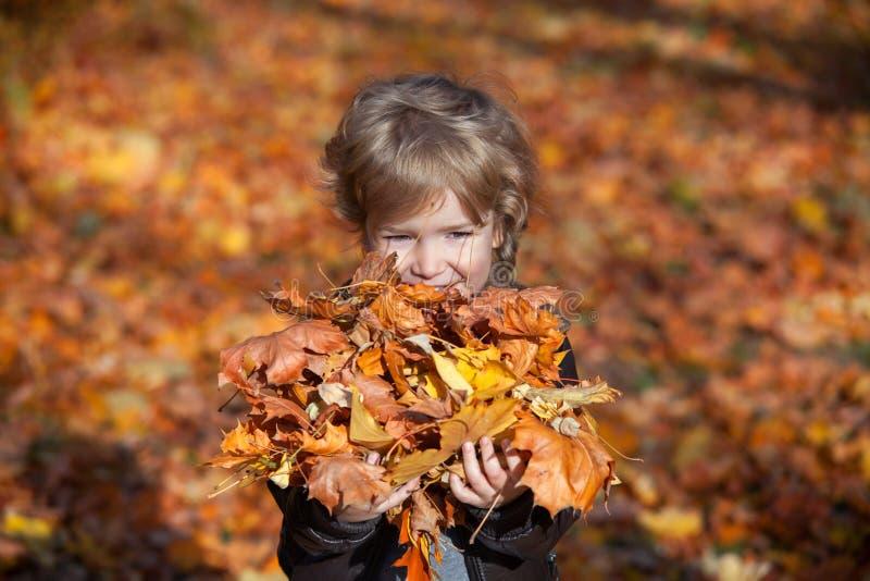 Jesieni chłopiec trzyma wiązkę żółci liście zdjęcie stock