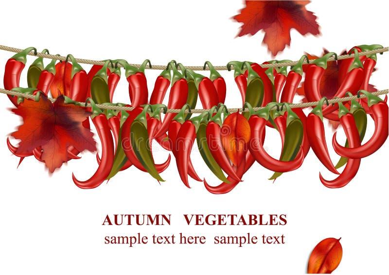 Jesieni chili pieprzy tła wektoru jarzynowa realistyczna ilustracja royalty ilustracja