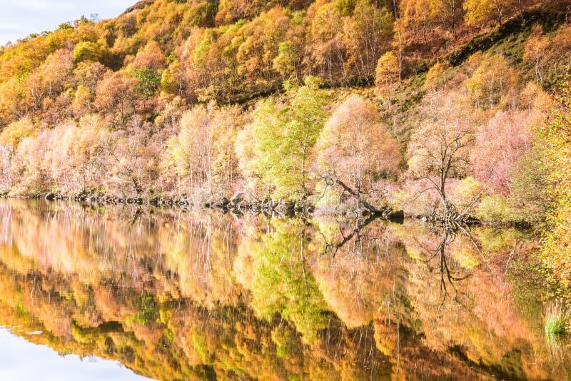 Jesieni colours w średniogórzach Szkocja - drzewa, góry, niebo, wzgórza, kamienie odbijali w loch wodach zdjęcie royalty free