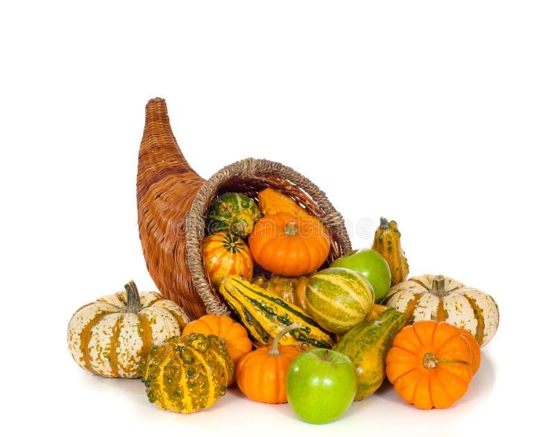 Jesieni Cornucopia na bielu zdjęcia stock