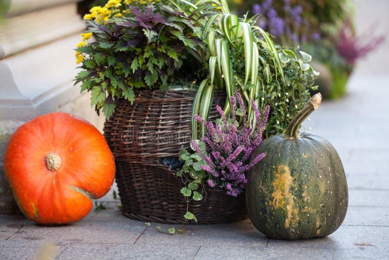 Jesieni dekoracja z baniami i kwiatami na ulicie w Europejskim mieście zdjęcie stock