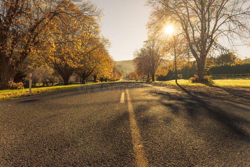 Jesieni drogi Nowa Zelandia zdjęcia stock