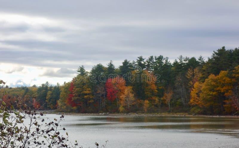 Jesieni drzew brzeg jeziora krajobrazu nieba czerwieni kolorów żółtych sceniczne ciemne zielenie zdjęcia royalty free