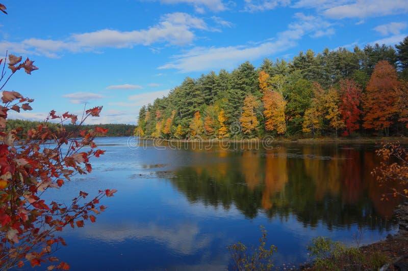 Jesieni drzewa odbijaj?cy w pustkowia jeziorze fotografia stock
