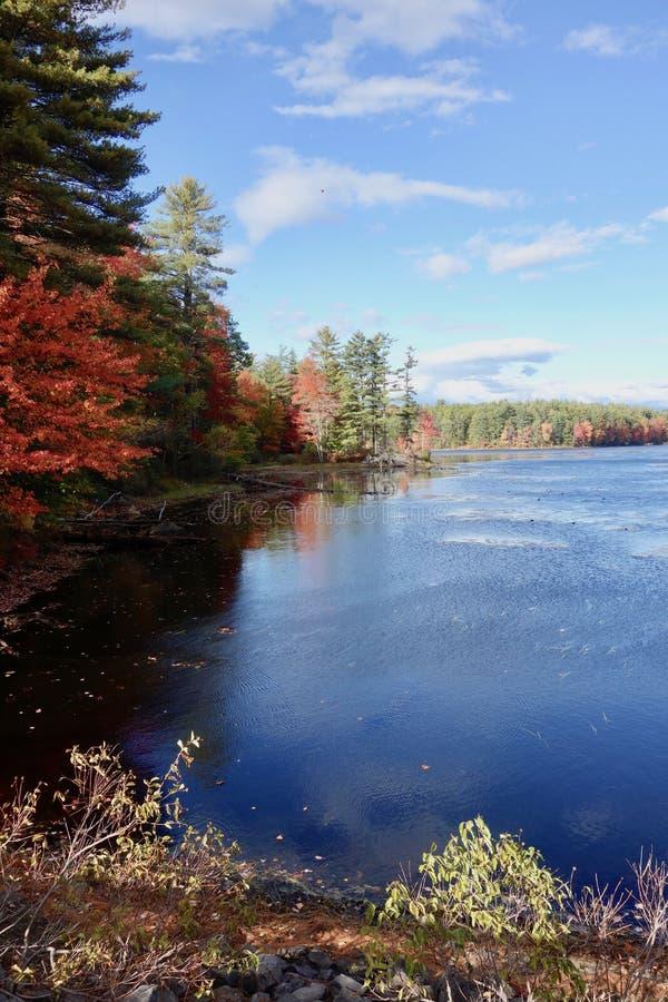 Jesieni drzewa odbijaj?cy w pustkowia jeziorze zdjęcia stock