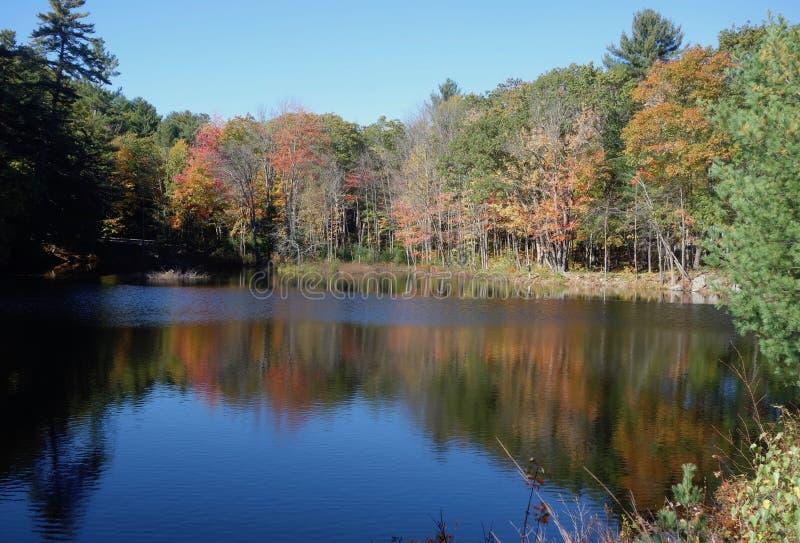 Jesieni drzewa odbijali w głębokiej błękitnej laguny wodzie zdjęcia stock
