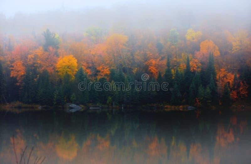 Jesieni drzewni odbicia w jeziorze z rankiem zaparowywają fotografia stock