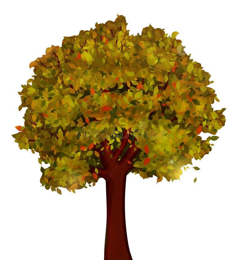 Jesieni drzewo na białym wektorze ilustracja wektor