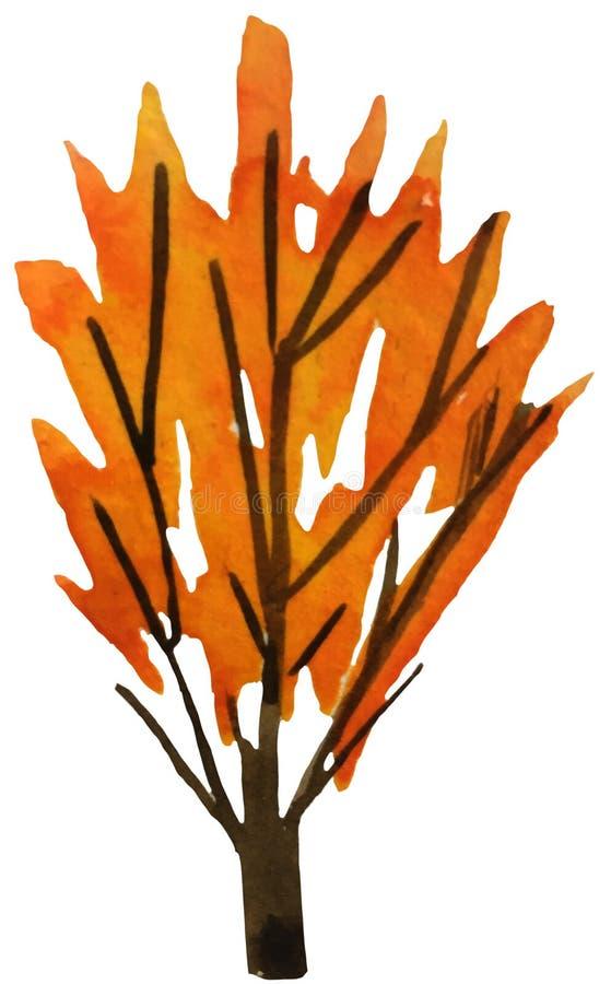 Jesieni drzewo z kolorowymi liśćmi na białym tle akwareli ilustracja dla druków, pocztówki, plakaty ilustracji