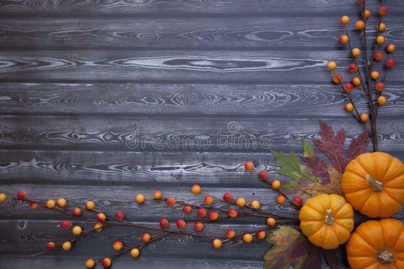 Jesieni dziękczynienia tło zdjęcia royalty free