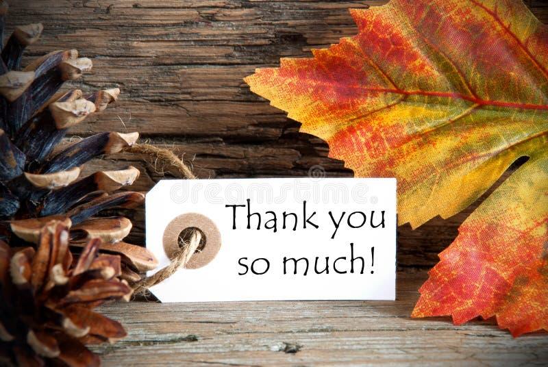 Jesieni etykietka z Dziękuje Ciebie tak dużo obraz royalty free
