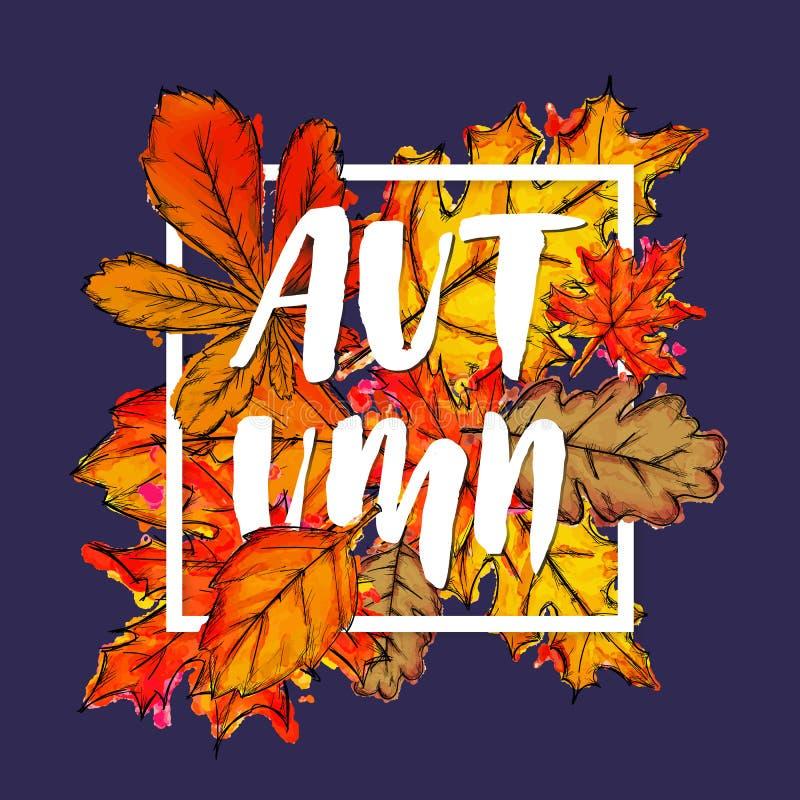 Jesieni farby akwareli Typograficzny spadek Opuszcza plakat ilustracja wektor