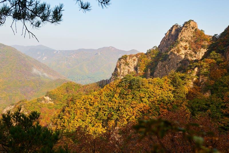 Jesieni góry w scenicznym punkcie obraz royalty free