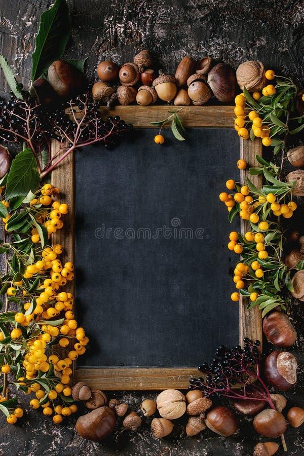 Jesieni jagody z chalkboard fotografia royalty free